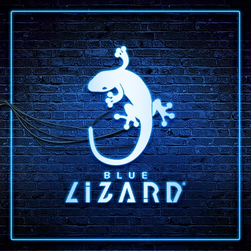 Blue-Lizard-500x500